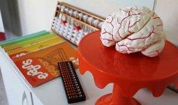 Material didático Franquia Supera Ginástica para o cérebro
